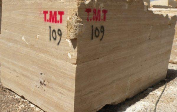 TMT - 1 of 9 (1)