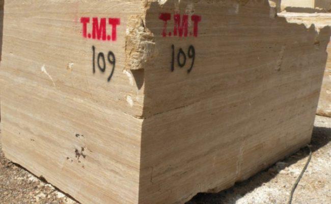 TMT – 1 of 9 (1)